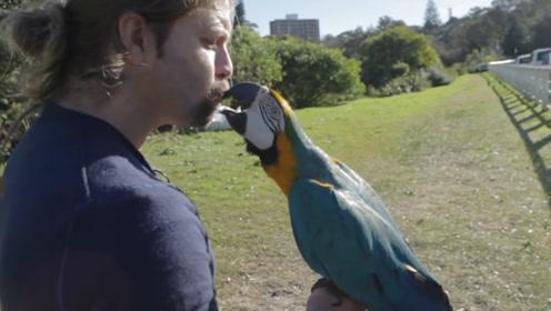 唯一能和鸟说话的人,家中养了数百只鸟儿,被人们称为鸟语者