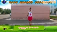 辛集南智邱紫怡然广场舞 站在草原望北京