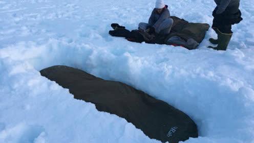 """奇葩旅行家把""""葬礼""""搬到了南极"""
