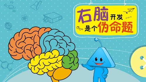 右脑开发是个伪命题