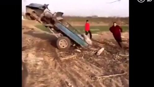 农村人就是牛!我想问问你怎么办到的?