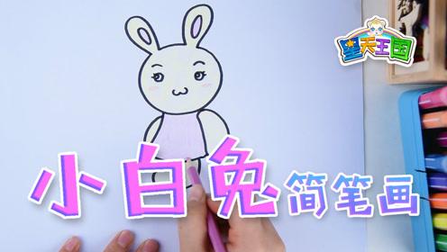 星天王国幼儿简笔画 小兔子