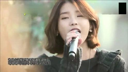IU户外演唱《好日子》改编版,清脆悦耳动听