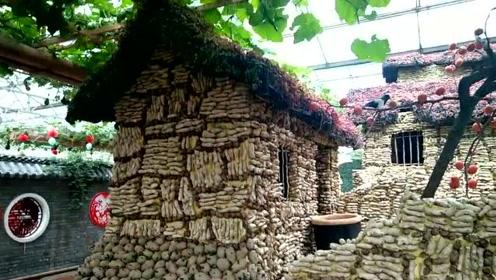 用大姜、芋头、蒜苔搭建的农家小院看着别有风情