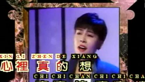 台湾老歌手经典怀旧老歌 百听不厌 千百惠