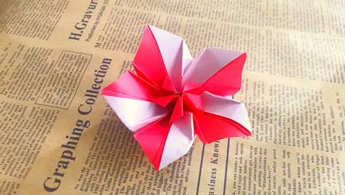 纸在乎你 来学一款好看的双色花折纸