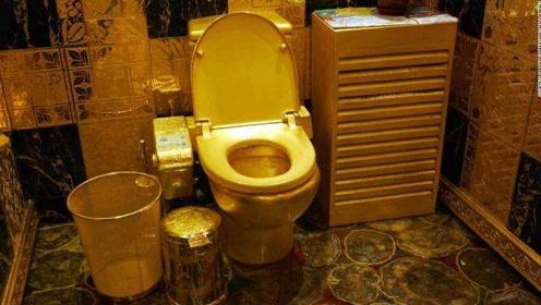 价值100万美金的18K黄金马桶,刷完捡了一地钱