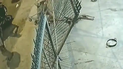 两男子深夜偷狗, 被发现后还与狗主人当场对峙, 太气人了