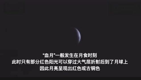 """200年仅3次的""""超级狼血月""""再次出现,视频曝光!"""