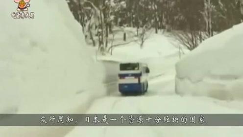 日本人下雪天如何收蔬菜?半米深的雪中扒出来,难怪卖的贵
