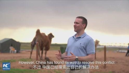 中国绿色奇迹
