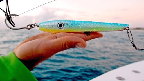 钓鱼新花样,用水诱饵,活饵和浮筒钓鲨鱼