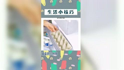 今日小技巧分享 你不要的蛋盒可以拿来做什么?