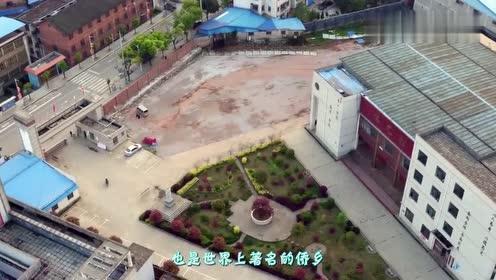 """中国唯一拥有3种车牌的城市,为啥还是个""""地级市"""""""
