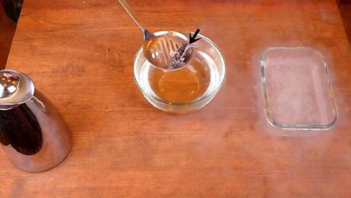 将鱼放进液氮再拿出来会怎样?老外脑洞实验,结果让人意外!