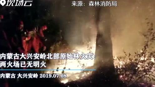 两火场已无明火 内蒙古大兴安岭北部原始林火灾仍在进行纵深清理