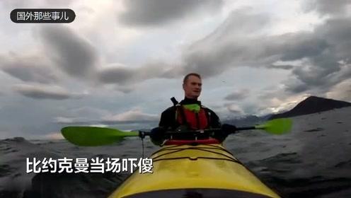 男子海中划船 突然跃出三头鲸鱼险些将其顶翻