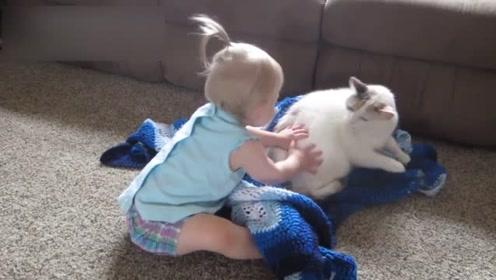宝宝独自和猫咪玩耍,接下来的画面太搞笑,父母看完都无奈了