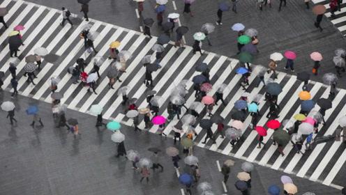 中国单身成年人口超2亿:会形成孤独经济