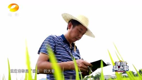 《潇湘身边事》之虫情检测   湖南电影频道