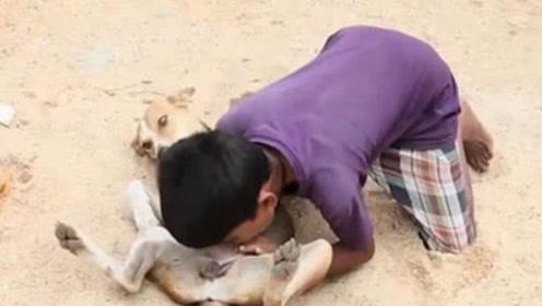 印度10岁小男孩喝狗奶上瘾,连续喝了7年,村里母狗见他就跑