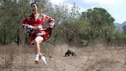 日本女子作死勾引科莫多巨蜥,立刻撒腿就跑,镜头拍下惊险过程