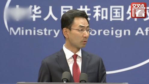 """多国海外华人集会对香港暴力行为说""""不"""" 中国外交部发言人回应"""