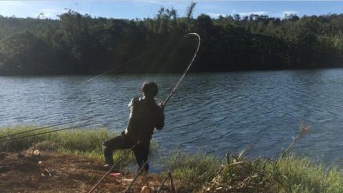 钓竿一拉动就马上跑去拉钓,钓竿是异常沉重,结果收获六斤大鲤鱼