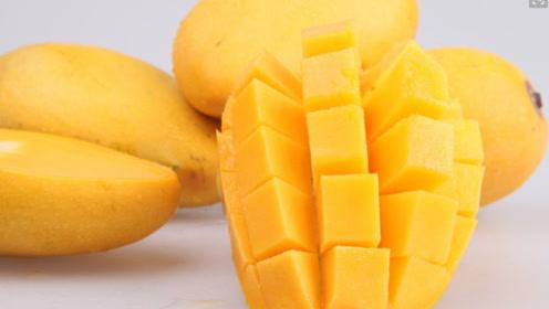 我国三大芒果之乡:海南、广西、攀枝花,哪的芒果好吃