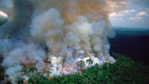 """亚马孙森林大火持续燃烧16天 """"地球之肺""""被浓烟笼罩"""