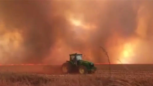 亚马逊森林大火持续燃烧 年初至今火灾次数已超过7.2万起