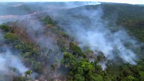 亚马逊雨林大火数周不停8个月7万起火灾,地球之肺要毁于一旦?
