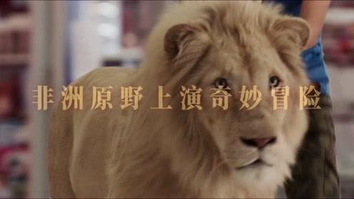 电影《白狮奇缘》全真狮出镜专治不服
