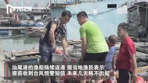 """台风""""白鹿""""将登陆福建广东沿海,渔民:绳子将船固定,带走渔网"""