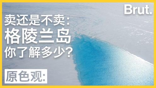 卖还是不卖?关于格陵兰岛,这5个冷知识你了解吗