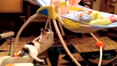 宝宝一巴掌打在大猫脸上,大猫的反应暖哭了