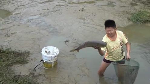 """俗语""""水过百天自生鱼"""",鱼是天上掉下来的?老祖宗说错了吧!"""