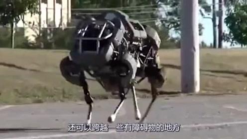 """美国发明这款""""机器马""""无所不能,带识别系统,跌倒能站起来"""