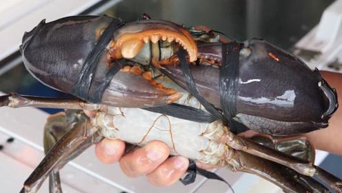 这样吃螃蟹,才叫过瘾,成品太馋人了