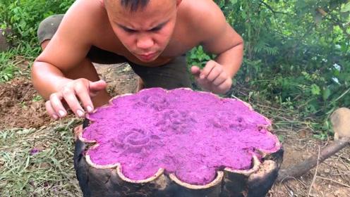 原始技术,小哥野外将紫薯和绿豆做出了新花样,好不好吃天知道