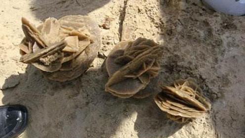 """为啥在沙漠中看到""""土疙瘩""""要捡起来?驴友:不捡就像错过一个亿"""