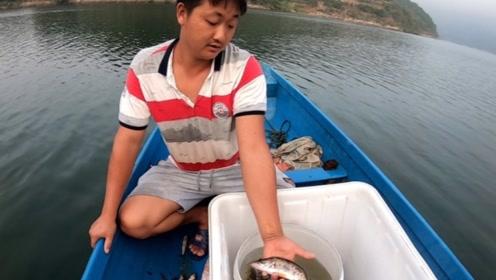 下11条小网,天没亮收网,收获几斤的杂鱼,收获了一斤多值钱货