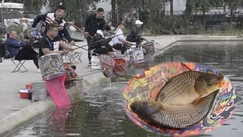 东北壮汉4小时钓70条鱼,胳膊累到贴膏药:有瘾