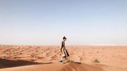 英国友人来到我国的陕西,下车却迷茫了:你们管这里叫沙漠?