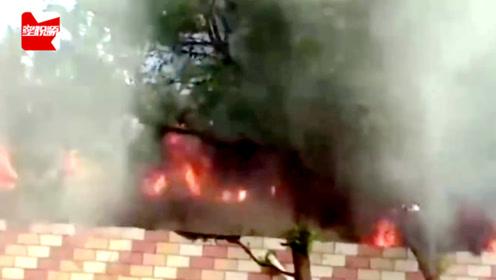 流浪狗收容点起火,女子大哭欲闯入火场救狗,被消防员拼命拉回来