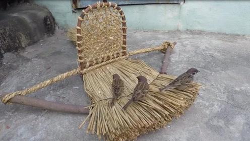 牛人在民间,农民大叔竟用稻草制作捕鸟神器,麻雀瞬间无处可逃