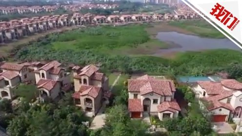 海南澄迈回应红树林遭破坏:已问责11人 涉及项目全暂停