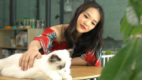 中国蓬勃发展的宠物产业背后是什么?