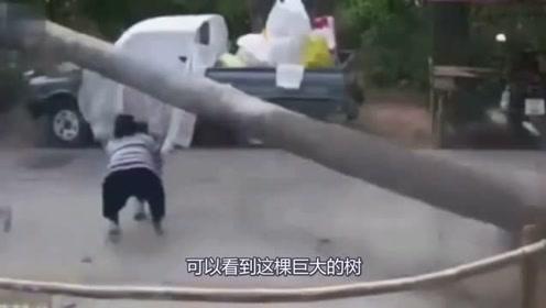 女子发现不对劲,抱上孩子撒腿就跑,下一秒还来得及吗