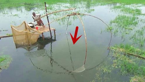 使劲拉起浑水中的大渔网,结果让人大开眼界,收获这么多诱人野味